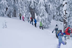 A group of 15 snowshoeing at Crater Lake on a blustery day. Photo by Jennifer Margulis.