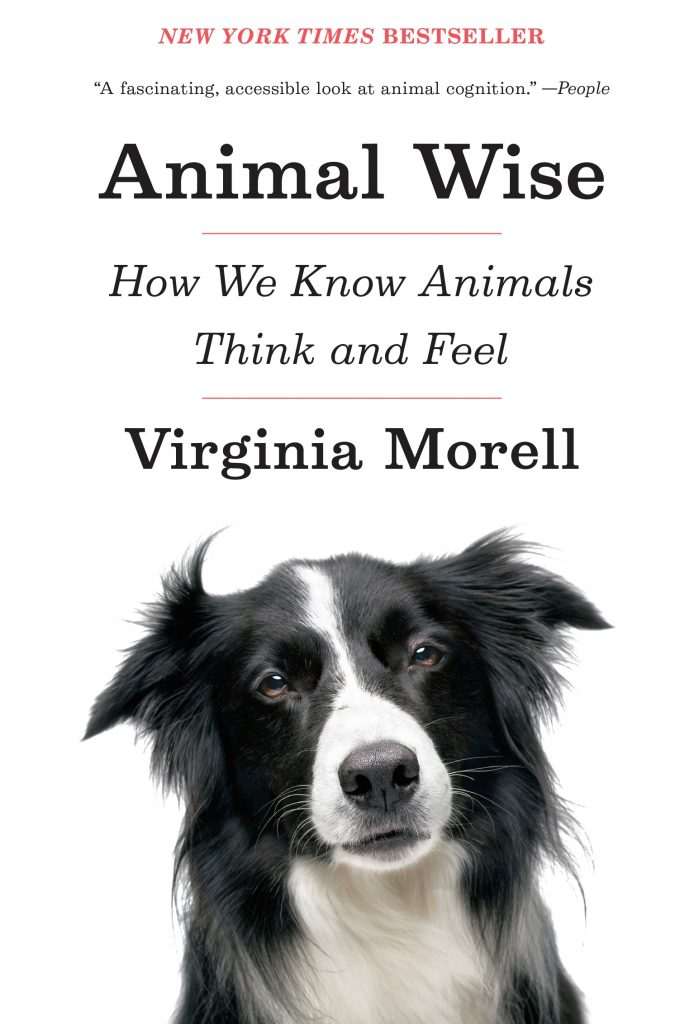 Cover of a new book by Virginia Morell, Animal Wise: How We Know Animals Think and Feel. Via Jennifer Margulis, Ph.D.