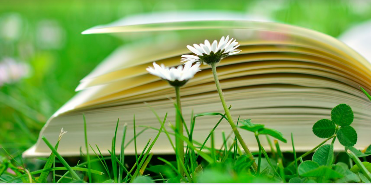 12 great books for 12-year-olds. Our family's favorite reads. Via Jennifer Margulis, Ph.D.