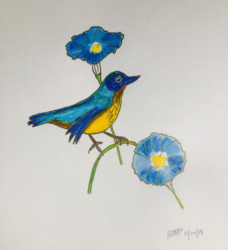 Watercolor blue bird on a morning glory. Coloring your life is fun and whimsical | Original art by Jennifer Margulis, Ph.D.