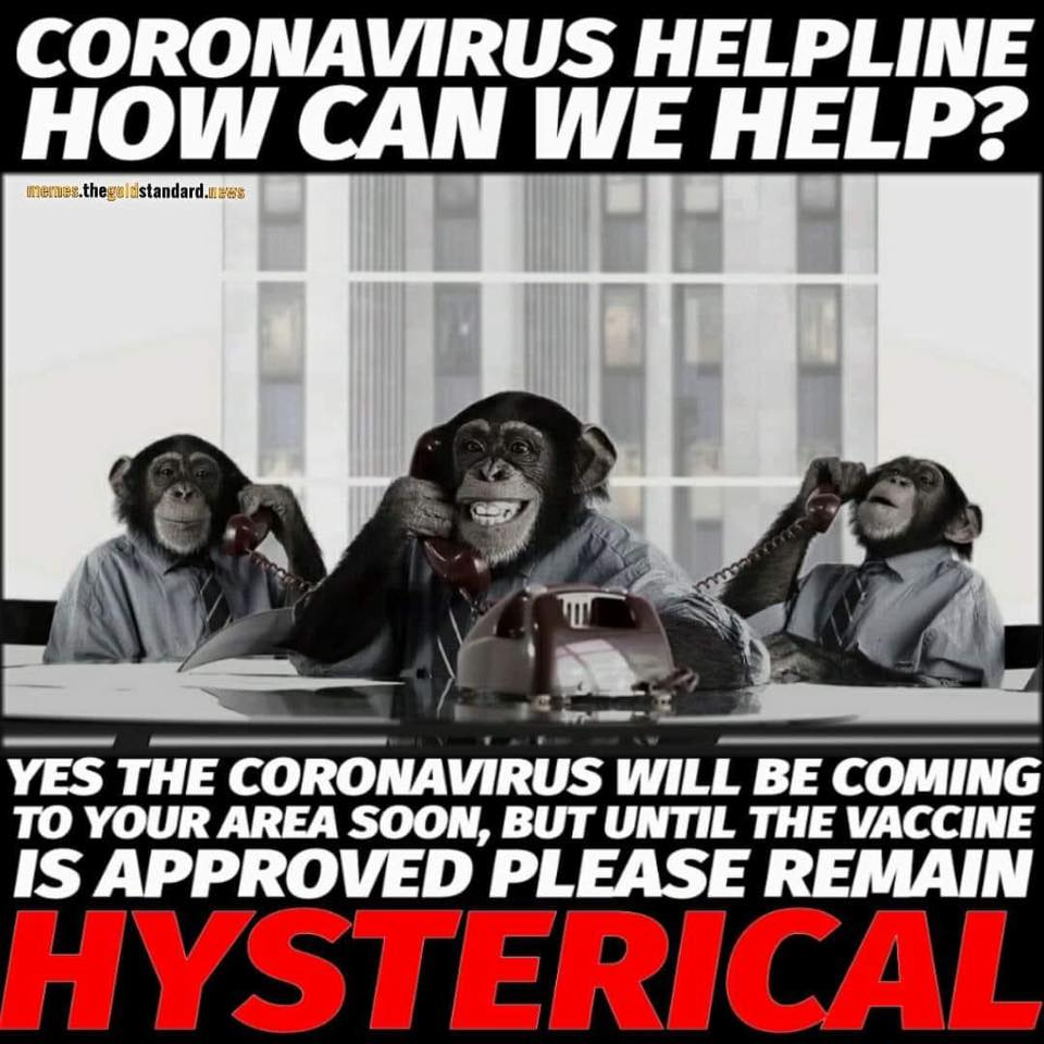 Memes about a coronavirus vaccine are popular on Facebook and social media. | Jennifer Margulis