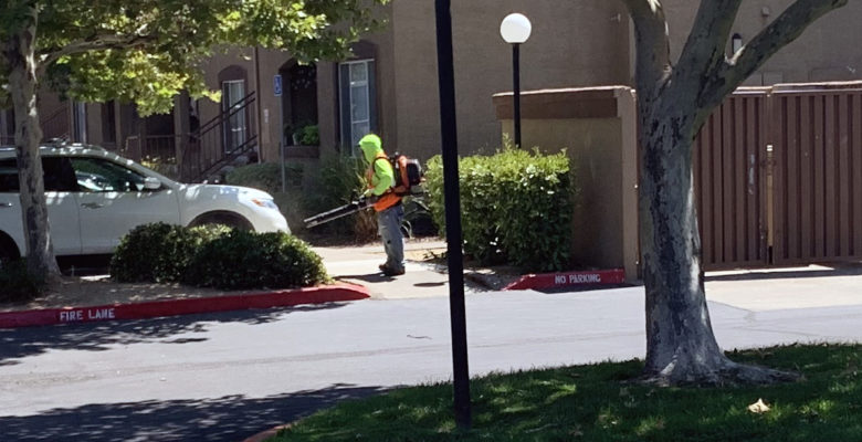 Noise pollution through leaf blowera